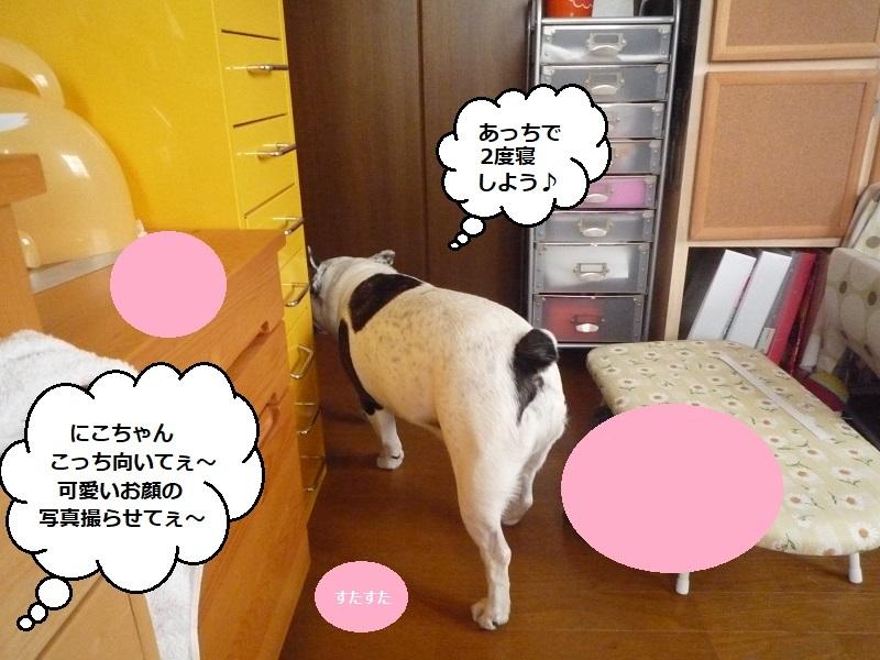 にこら201011to201108 3796