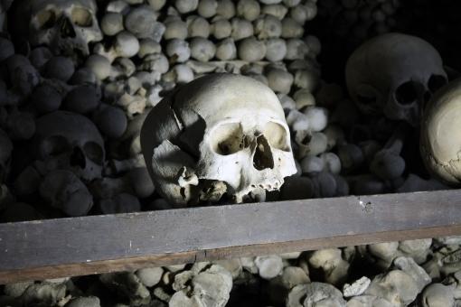 遺骨,納骨,骸骨