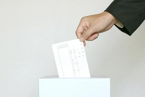 地方参政権,選挙