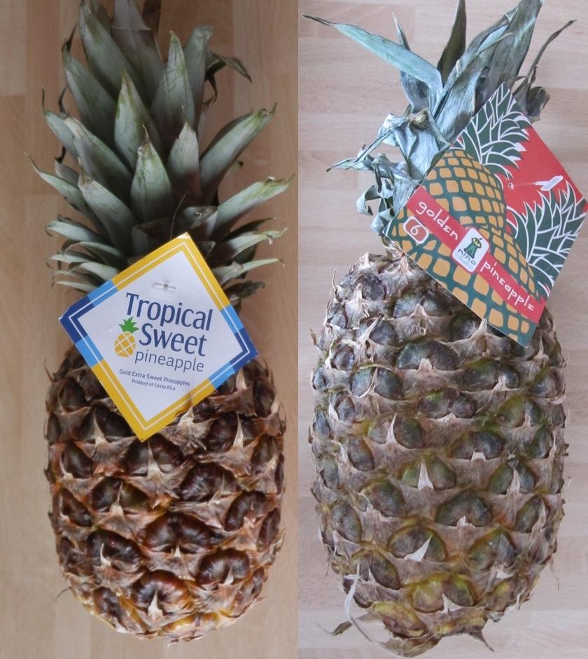 ananas (840x942)