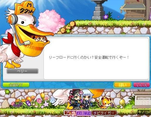 Maple_180807_110454.jpg