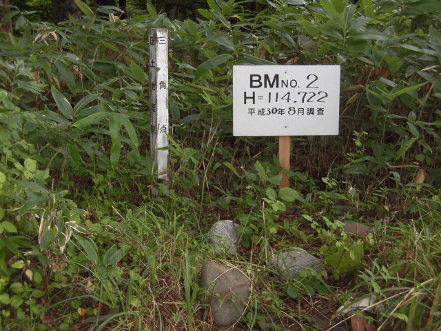 CIMG4158.jpg