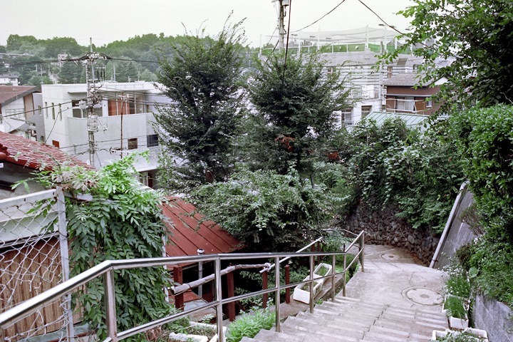 柿生の町中階段