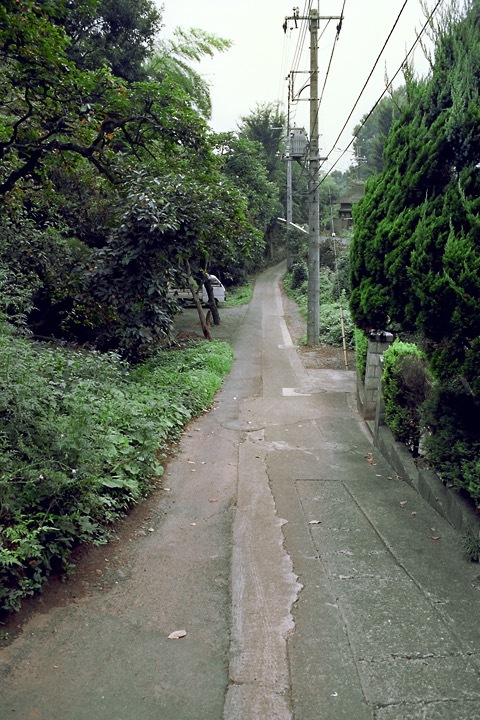 柿生の町中路地裏