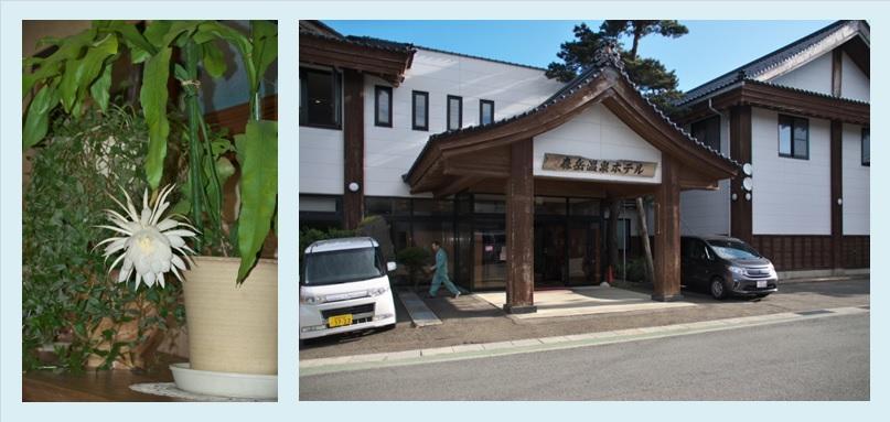 月下美人@森岳温泉ホテル