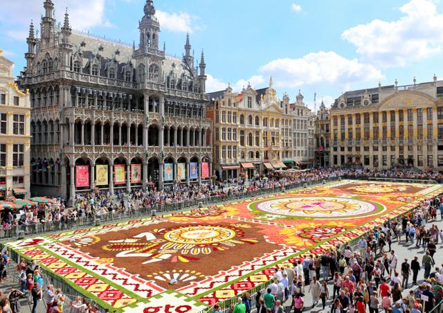【ベルギー】世界遺産の広場に50万本の花じゅうたん