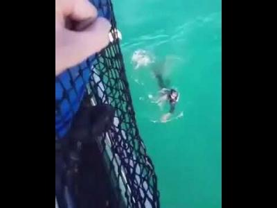 【衝撃!】フランス海兵隊員がふざけて海に飛び込んだら大変なことに!