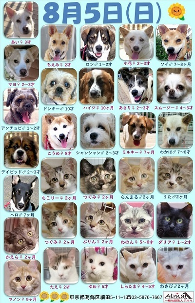 ALMA ティアハイム2018年8月5日 参加犬猫一覧