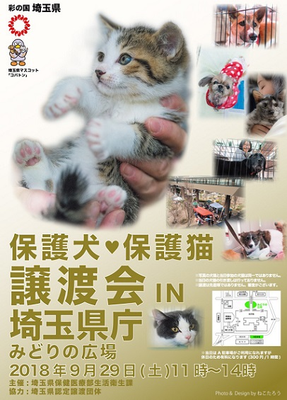 埼玉県譲渡会