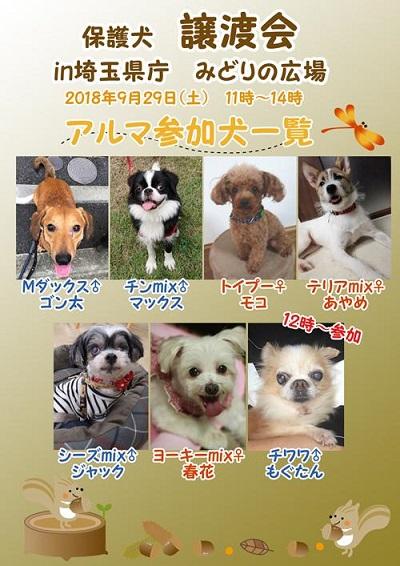埼玉県譲渡会2