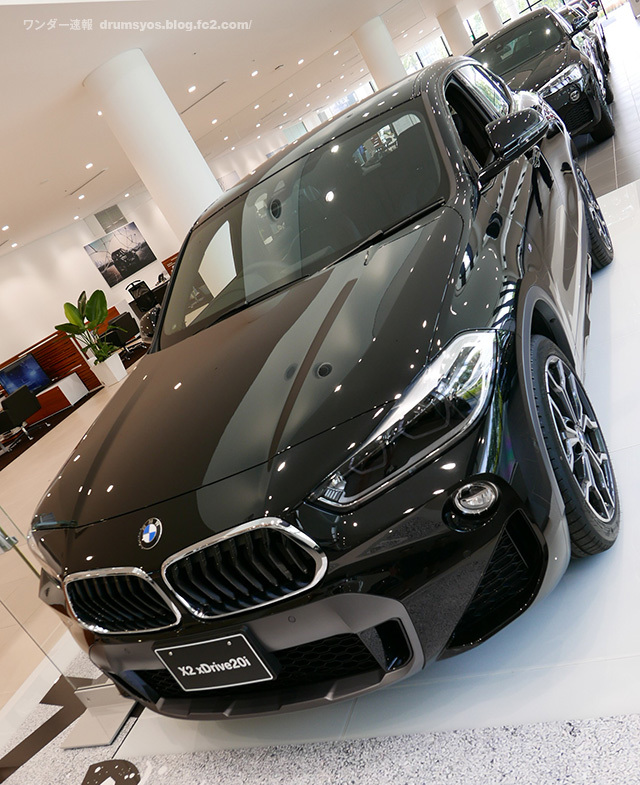 BMWX2_08.jpg