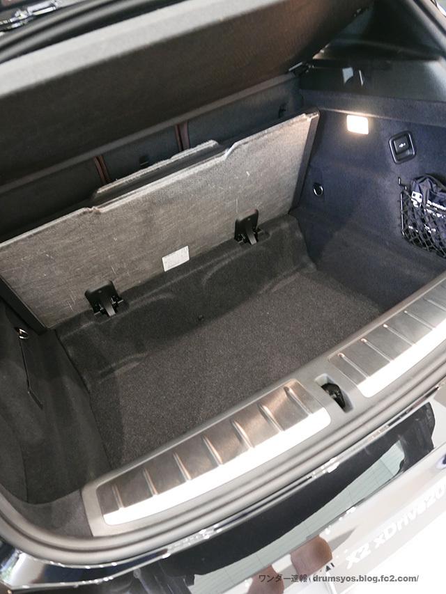 BMWX2_24.jpg