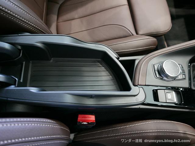 BMWX2_37.jpg