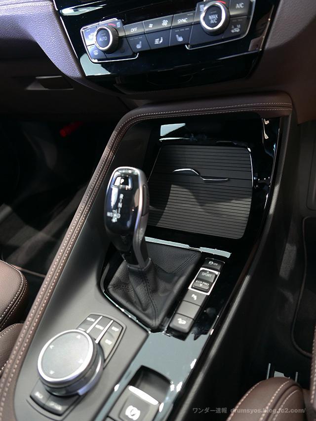 BMWX2_41.jpg
