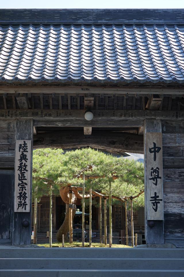 chusonji01_201806131004251e1.jpg