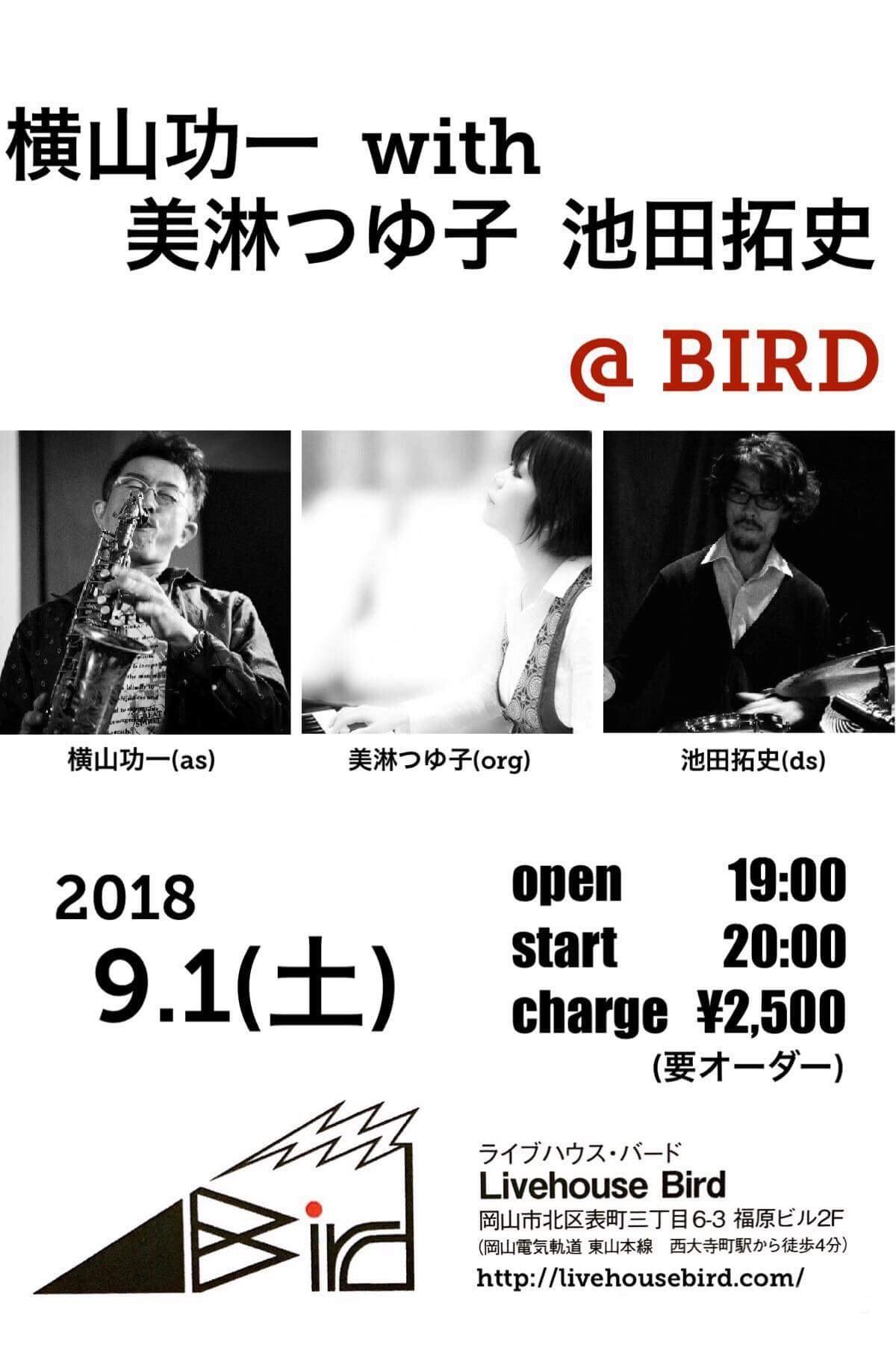 bird91.jpg