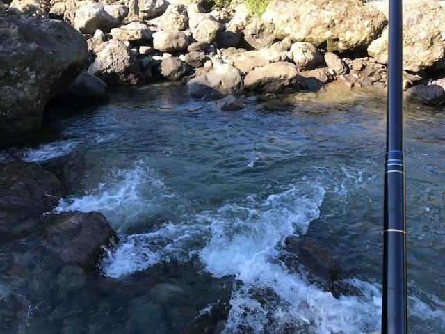 2018残り1週間海川3