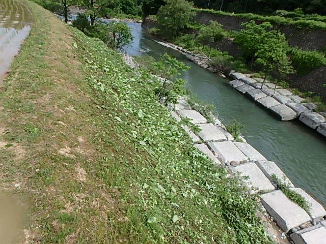 いっぱい海川9