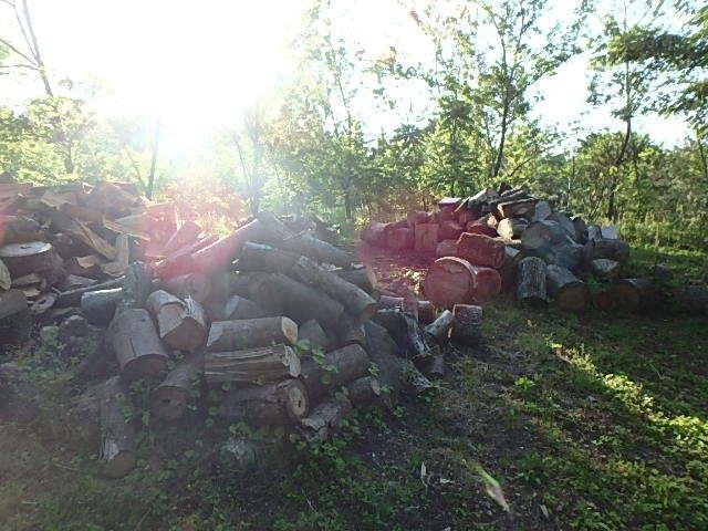 いっぱい海川の後の薪割り1