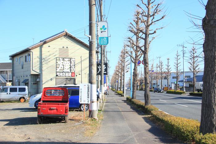 IMG_4999-2.jpg