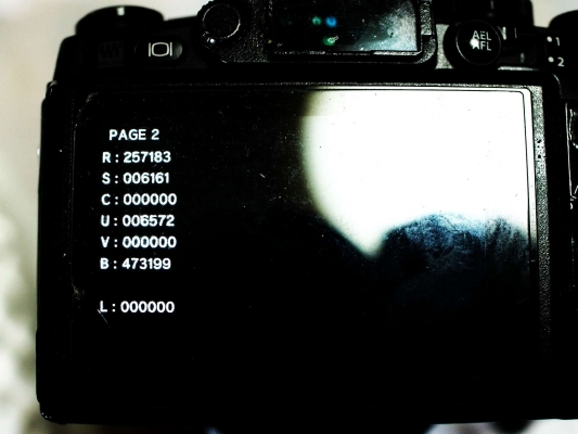 P8280048.jpg