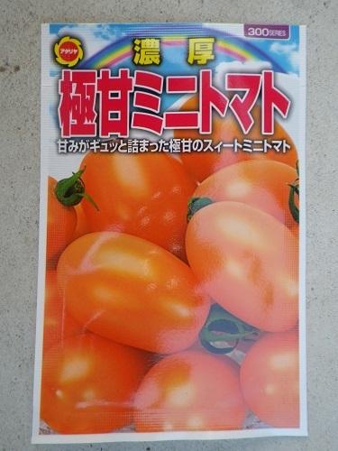 トマト【キャンドルライト】表_アタリヤ
