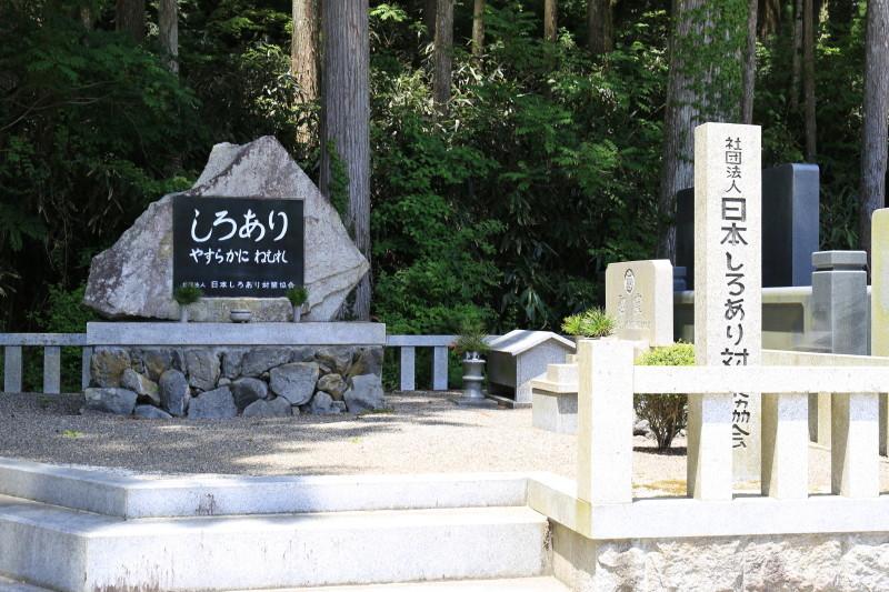 高野山 企業の墓