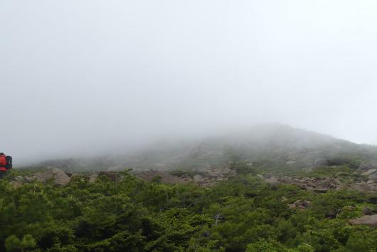 2018.06.早池峰山