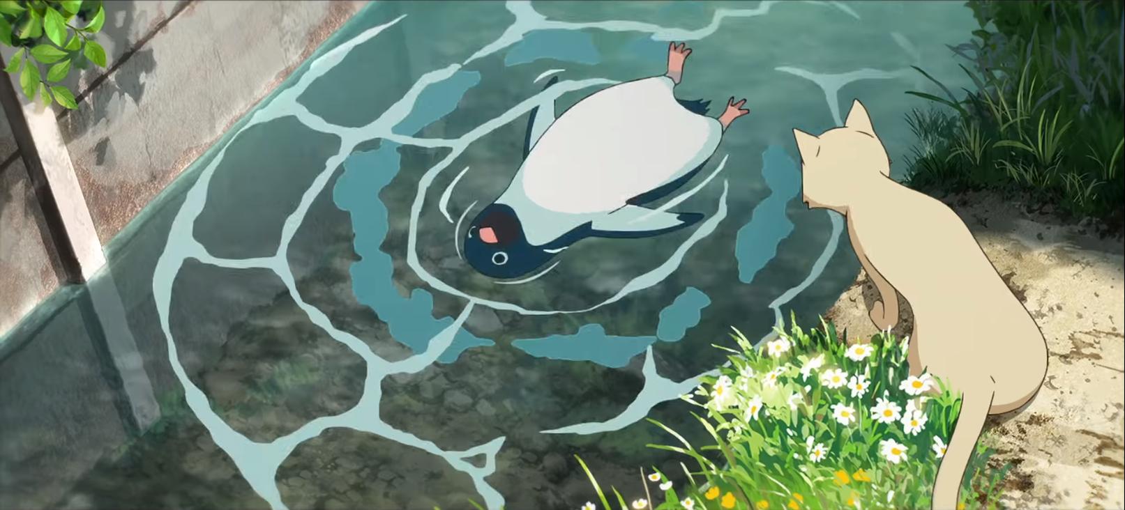 20180826ペンギン
