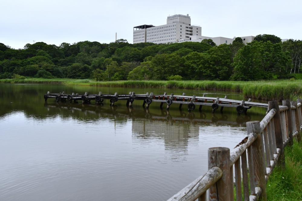 1釧路春探公園