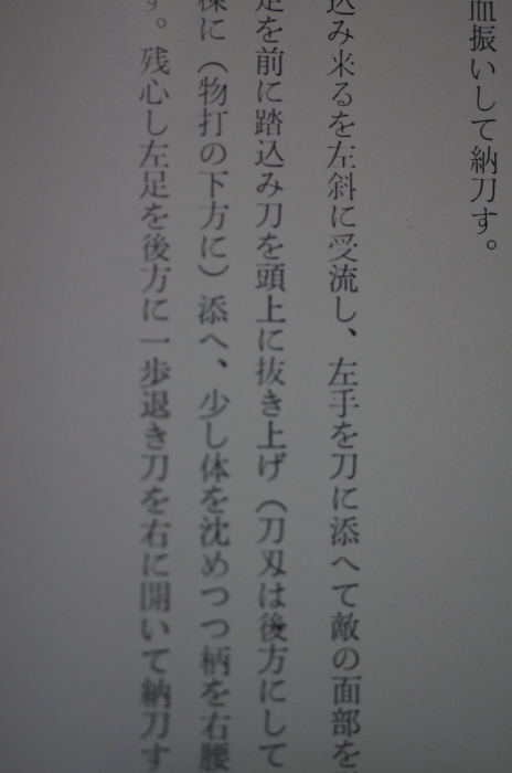 DSC00424.jpg