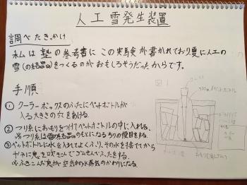 IMG_7017.jpg