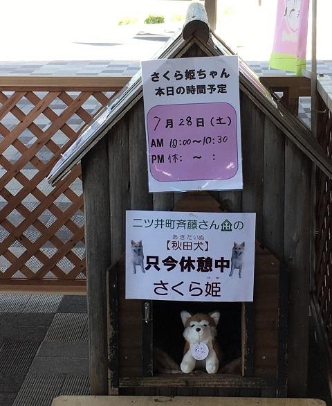 4さくら姫ちゃん