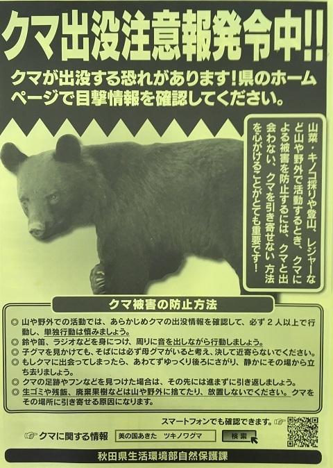 熊パンフレット