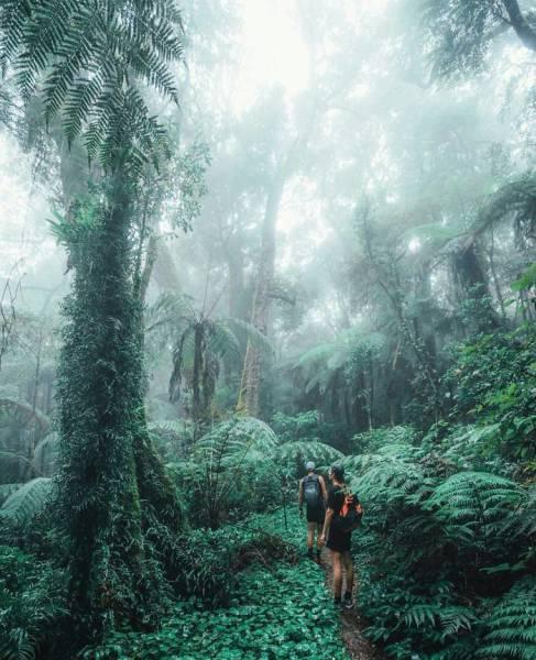 大自然の画像(49枚目)