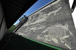 環境破壊ゼロ??ダムの壁面に高圧洗浄機で描かれたアートが凄い!!の画像(5枚目)