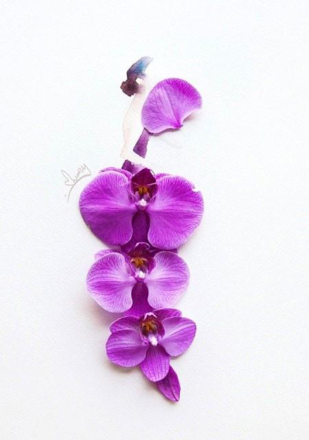 本物の花で描いたアートが華やかで癒される!!の画像(17枚目)