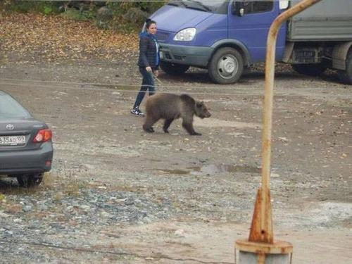 【画像】ロシアなら当たり前!ちょっと信じられないロシアの日常風景wwの画像(13枚目)