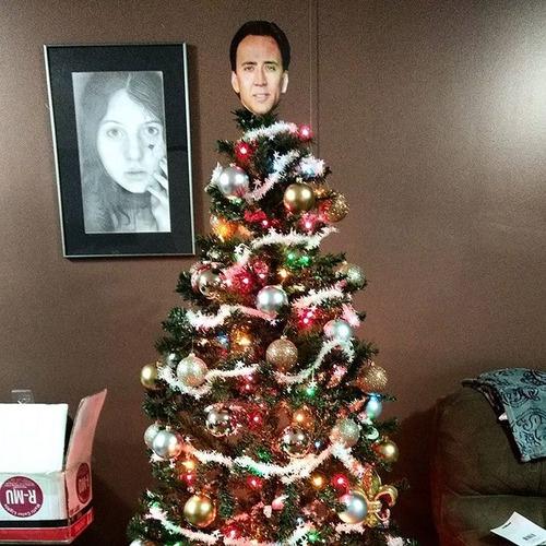 カオスなクリスマスツリーの上の飾りの画像(20枚目)