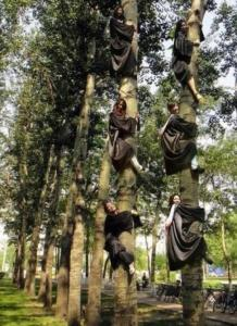 アジアの人たちの逞しさとか、力強さとかが伝わってくる画像の数々!の画像(74枚目)