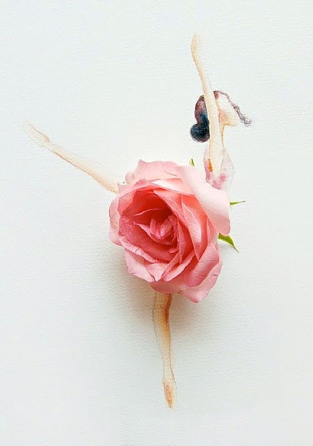 本物の花で描いたアートが華やかで癒される!!の画像(20枚目)