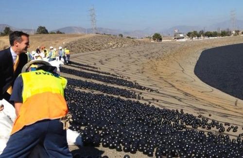 【画像】ダムに20000個の謎のボールを投入して、水面が真っ黒になっている!!の画像(1枚目)