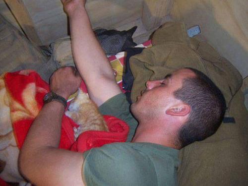 戦場にもネコは居る!!極限状態でも癒される戦場のネコの画像の数々!!の画像(24枚目)