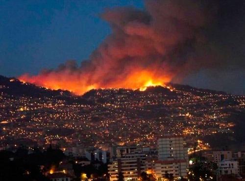 フランスのマルセイユの山火事の画像(4枚目)