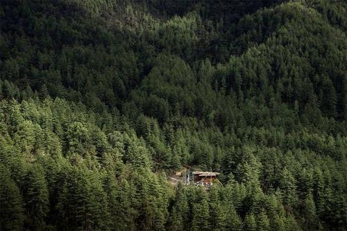 森の中の隠れ家の画像(32枚目)
