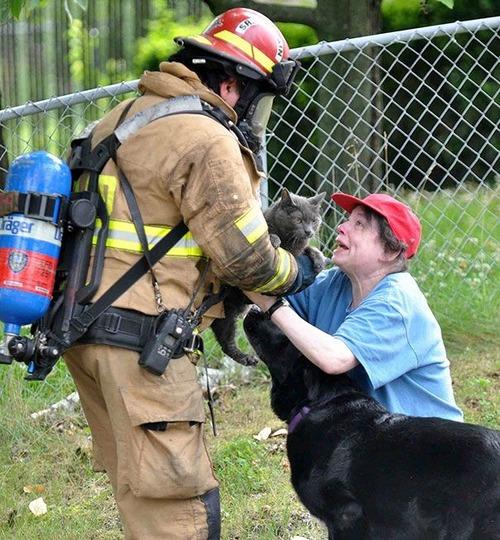 【画像】動物達も本気で助ける!ちょっと癒されるレスキュー隊の仕事の様子!!の画像(14枚目)