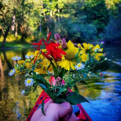 カヤック(カヌー)に乗る理由がわかる川沿いの風景の画像の数々!!の画像(7枚目)