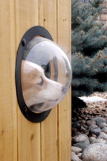 【画像】ワンちゃん大喜び!カッコいい犬用の窓!!の画像(2枚目)