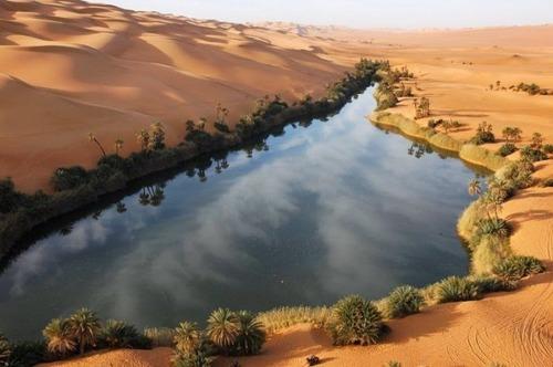 サハラ砂漠にある小さなオアシスが美しすぎて凄い!の画像(5枚目)
