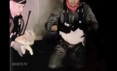 ネコは無重力空間でも受身_02